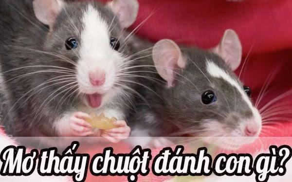 Mơ thấy chuột đánh con gì?